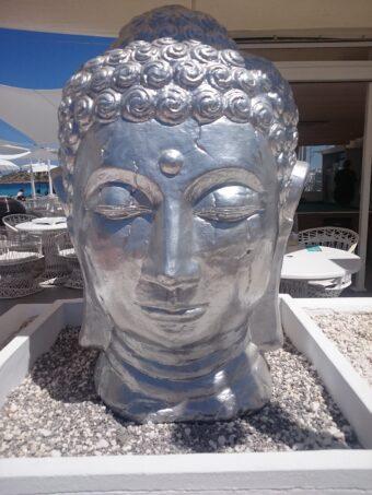 Psychology and Spirituality Series  4- The Power of Your Emotion – Sadhguru